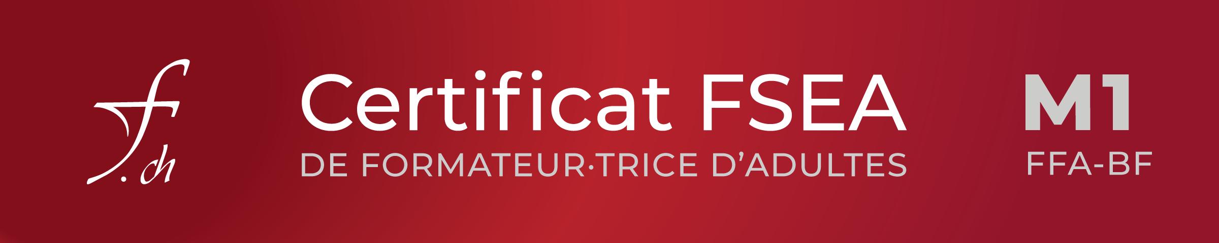 formationSch brevetFFA M1 Certificat FSEA